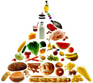 lobbyist sugar diet food pyramid lobbying