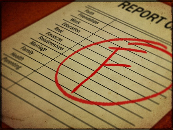 Report Card F  The Ethical Nag